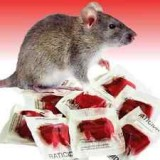 Pesticide Rat and Mouse 200g 2057 pk1