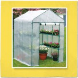 Greenhouse Walk Internal Large 65119 pk1