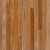 Spotted Gum Flooring  80x19 T&G Select Grade 1.0lm
