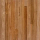 Spotted Gum Flooring  80x19 T&G Feature pk1